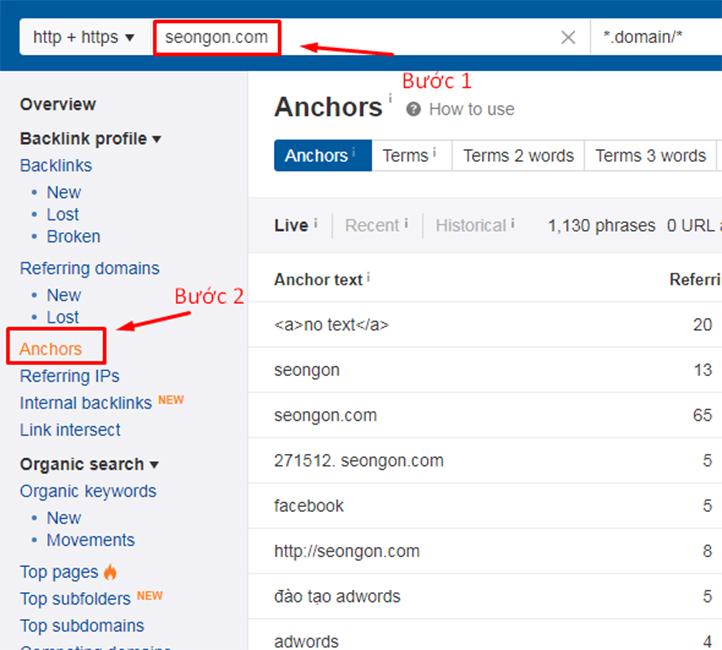 Kiểm tra mật độ anchor text trên Ahrefs