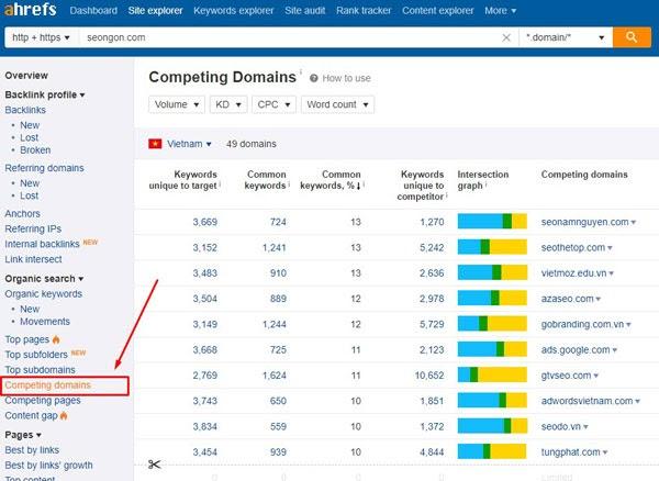 thống kê domain đối thủ cạnh tranh