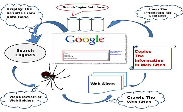 Cách Google Tìm kiếm hoạt động