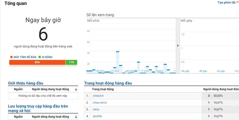Biểu đồ báo cáo người truy vào website