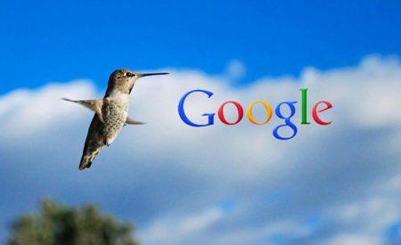 """Thuật toán Google Hummingbird: Bí mật của """"chim ruồi"""""""