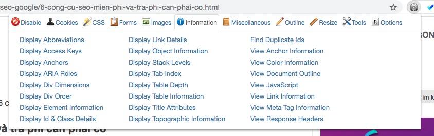 Công cụ tối ưu Onpage Web Developer