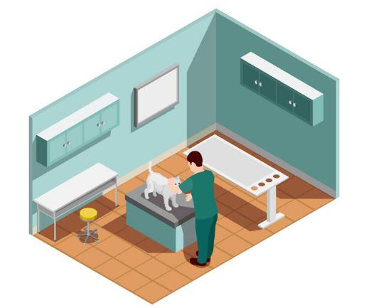 Case Study SEO – Bệnh viện thú y
