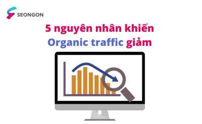 Google: 5 nguyên nhân chính và cách phân tích tại sao website lại suy giảm organic traffic bất thường